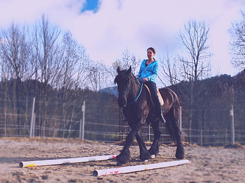 Reiter mit Garrido Reitkissen auf pferd