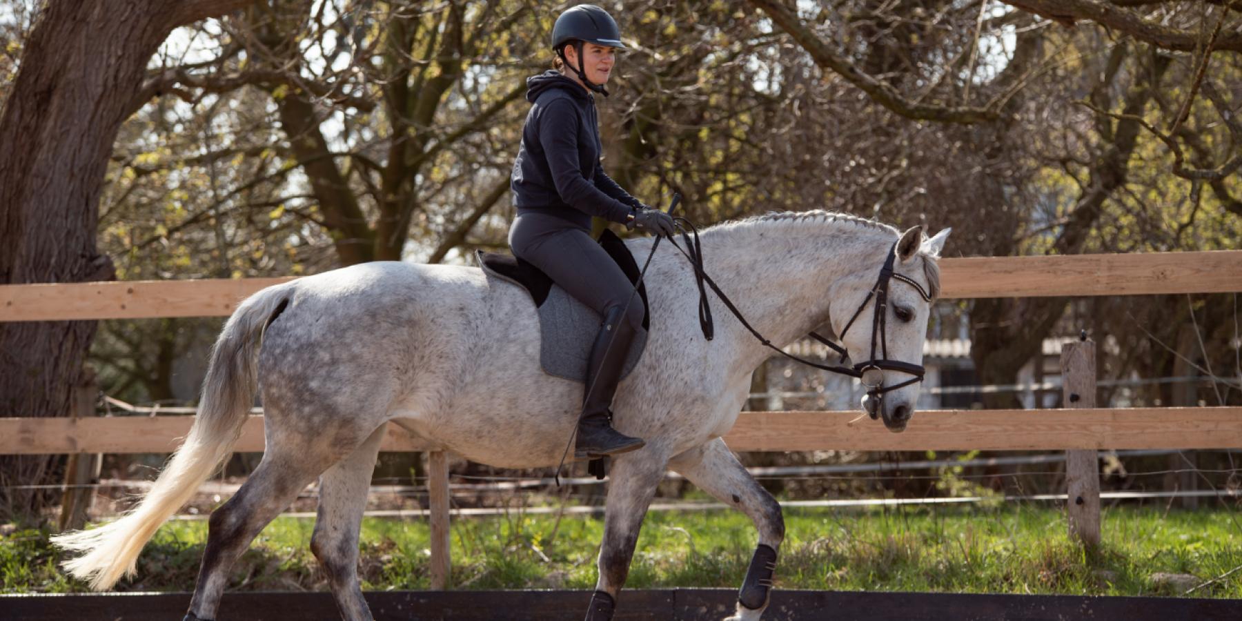 Reiter auf Pferd mit Garrido Reitkissen
