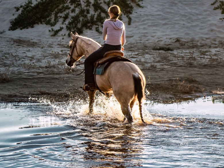 Im Wasser reiten